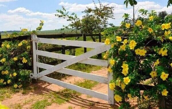 A simplicidade se faz presente na entrada de chácara