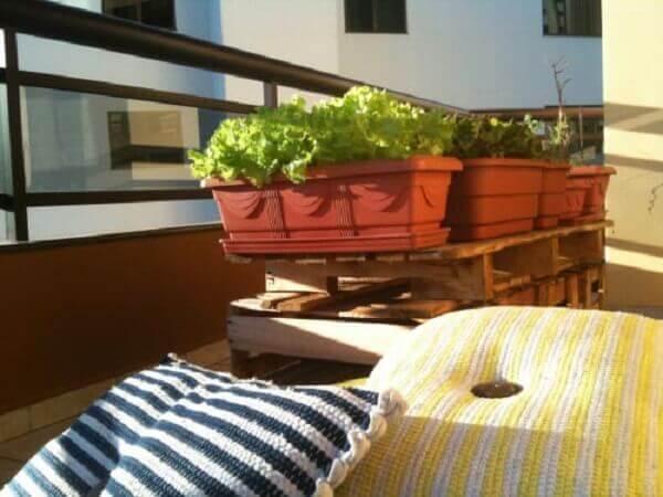 Como plantar alface no apartamento