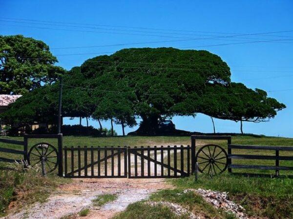 Portão de madeira utilizado compõem a entrada de chácara