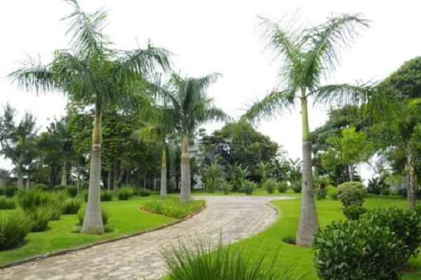 Invista no paisagismo para entrada de chácara