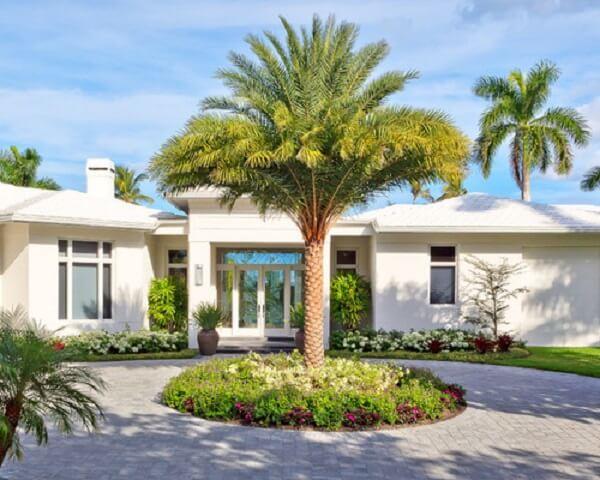 Tipos de palmeiras de centro