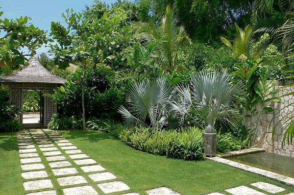 Tipos de palmeiras para decorar jardim