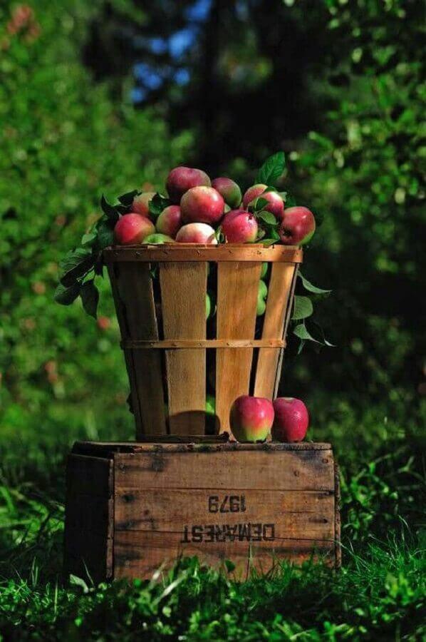 decoração de festa branca de neve com cesto de madeira recheado de maçãs Foto Creating Home