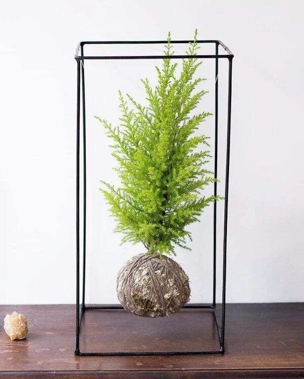 A kokedama é perfeita para uma decoração minimalista