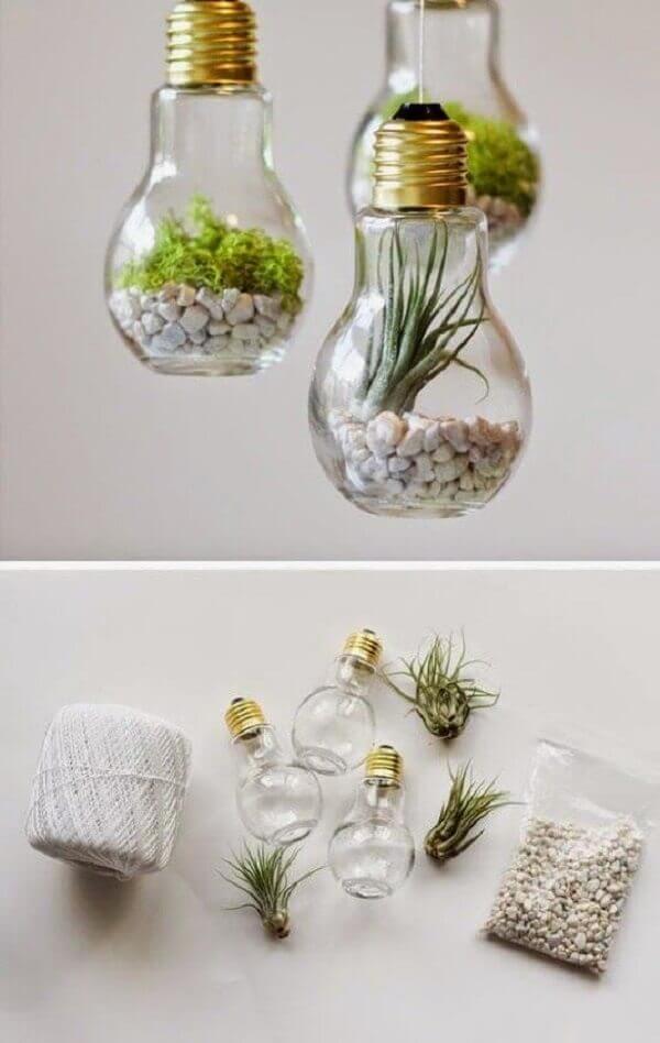 Terrário na lâmpada, DIY baratinhos para decorar sua casa