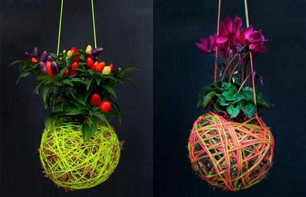 Kokedama com cordas coloridas