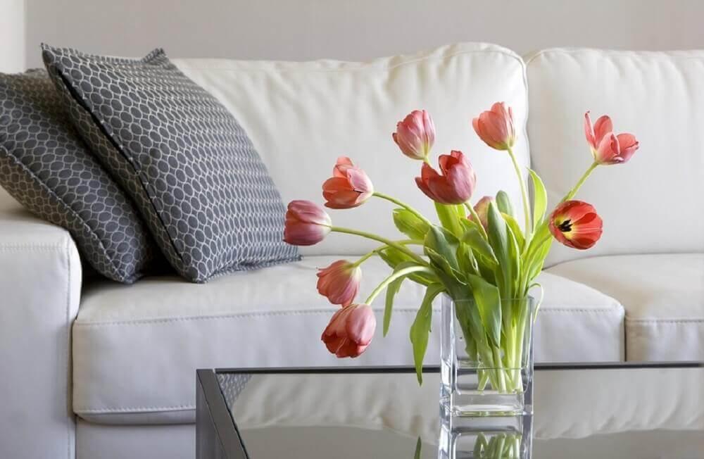Flores da primavera Tulipas