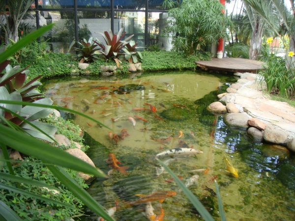 lago artificial