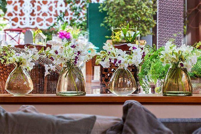 Flores da primavera: Orquídeas