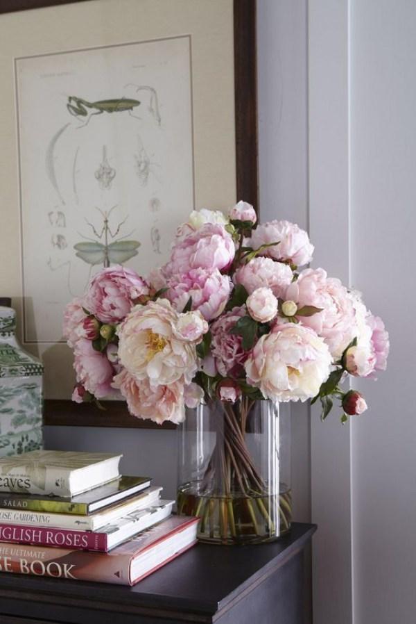 Peônia Flores da primavera