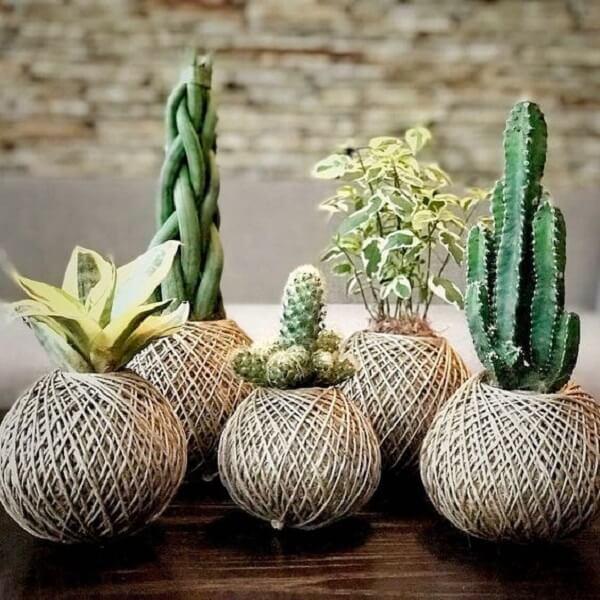 Utilize diferentes espécies de plantas para formar sua kokedama