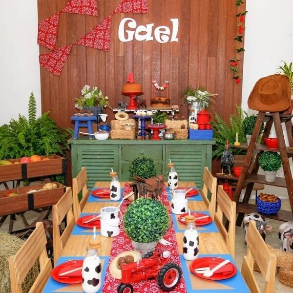 Decoration with elements of the field for party farmendinha