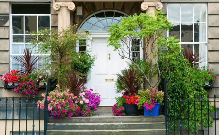 Flor de petúnia cultivada em vasos decora o hall de entrada desta residência