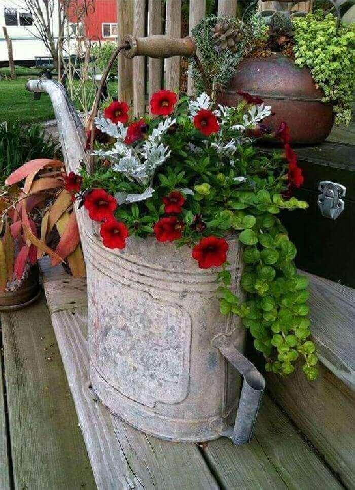 Flores de petúnia em tom vermelho cultivadas em um regador