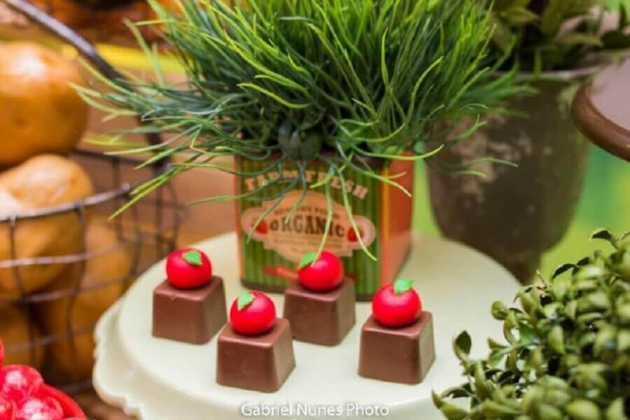 candies decorated with sugar fruits for the little farm party Photo Ateliê Crispim