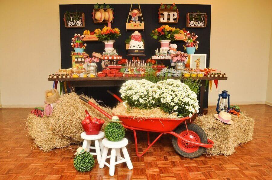 festa da fazendinha decorada com palha Foto Blog Encontrando Ideias