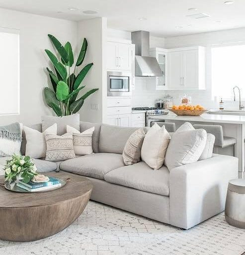 Móveis na sala de estar na cor off white com plantas