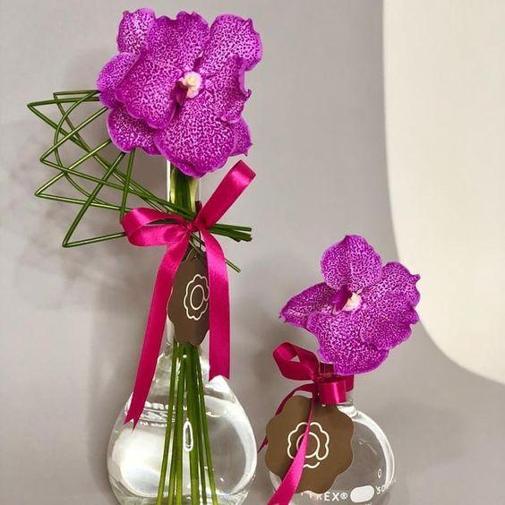orquídea vanda - arranjo grande e pequeno de orquídea vanda