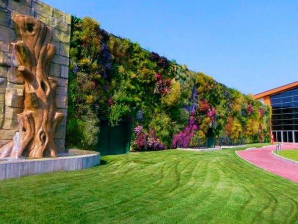 tipos de grama - parede com vegetação colorida e piso com grama - Revista Viva Decora.