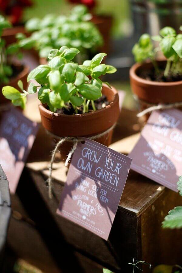 vasinho de plantas para lembrancinhas festa fazendinha Foto PopSugar