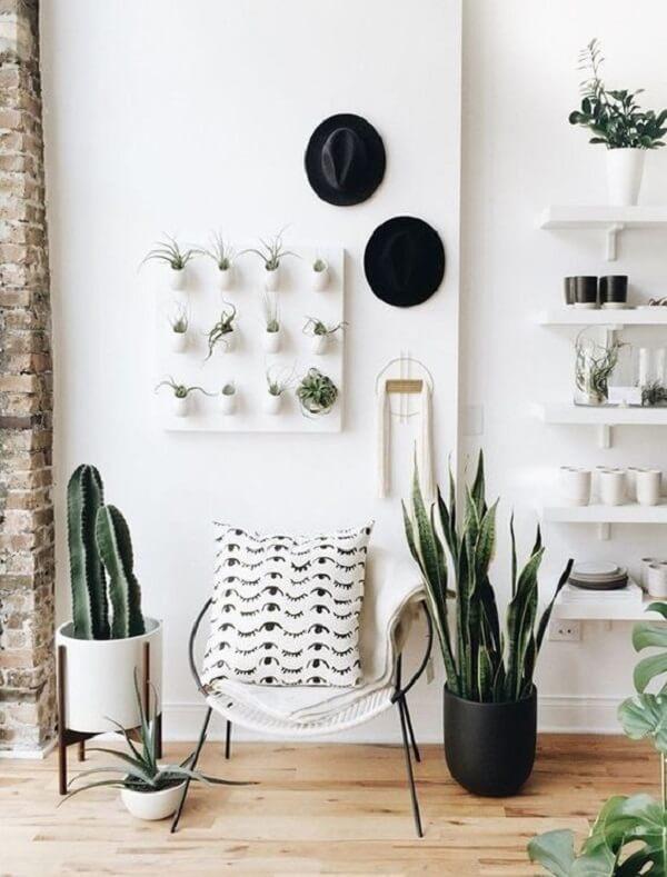 As plantas para apartamento trazem delicadeza e frescor para a decoração