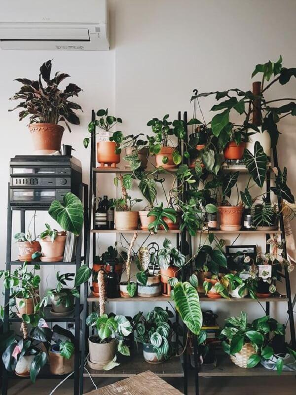As plantas trazem muito verde e frescor para a decoração