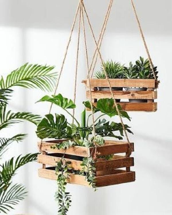 Caixotes de feira acomodam as plantas para apartamento
