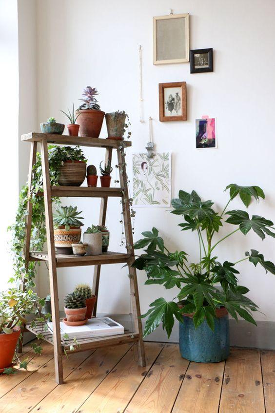 Estante escada de madeira decorada com flores e plantas