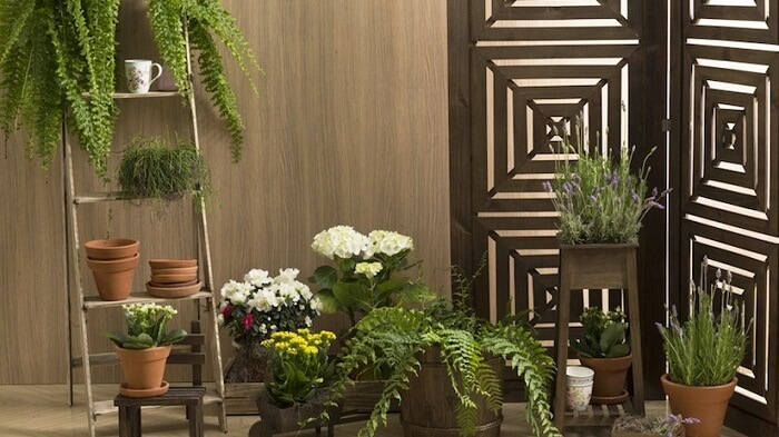 Para varanda inclua uma estante escada para as plantas