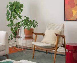 Plantas para apartamento - sala com cadeira de madeira e vasos de plantas