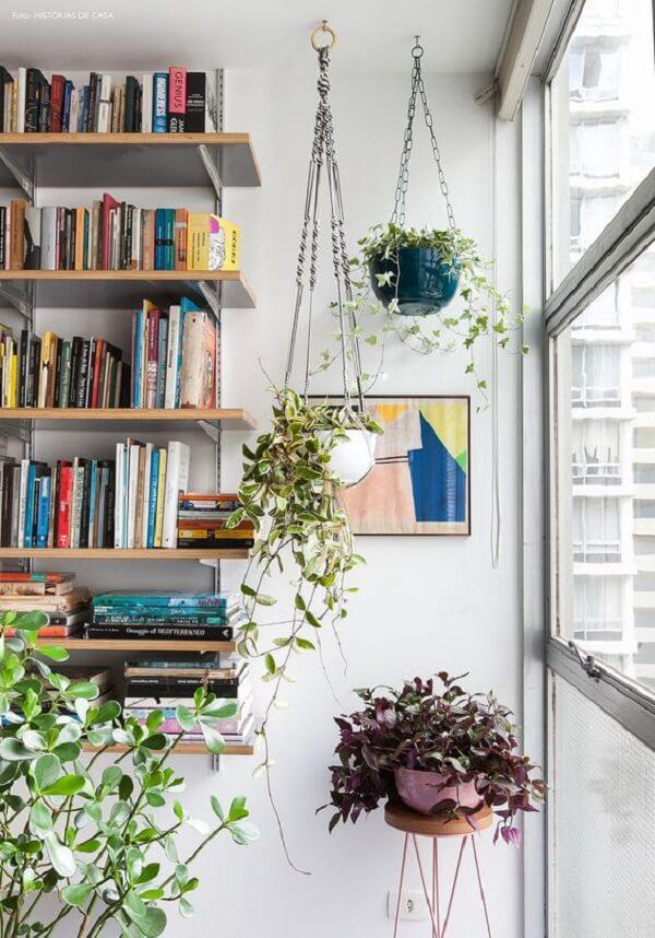 Procure colocar as plantas para apartamento próximas a janela para que possam receber a luz natural