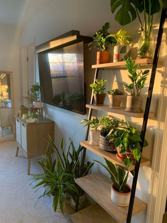 Sala de estar com estante escada