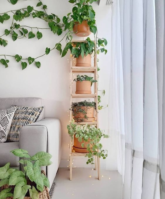 Sala de estar com estante escada pequena ao lado do sofa