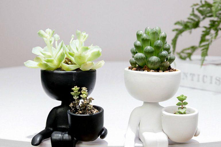 Vaso decorativo pequeno