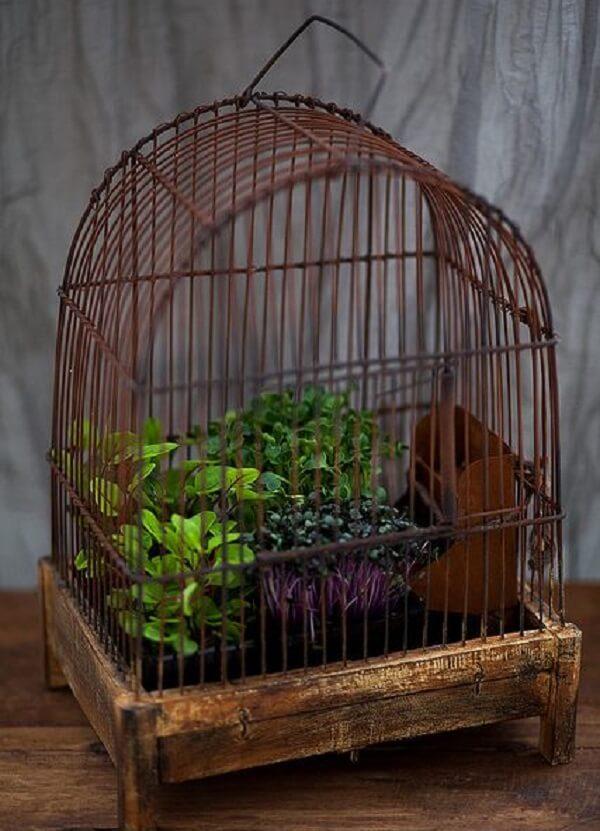 Gaiola de passarinho serve de base para vasos de plantas