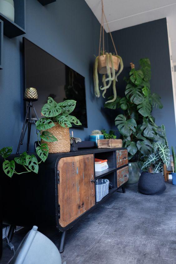 costela de adão - sala de estar com vasos de montera