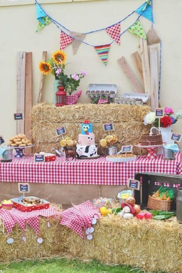 decoração rústica para festa da galinha pintadinha Foto Catch my Party
