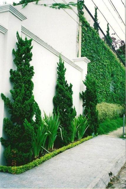 kaizuka - fila de kaizukas em parede