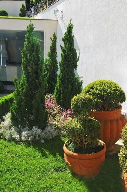 kaizuka - jardim com uma série de plantas