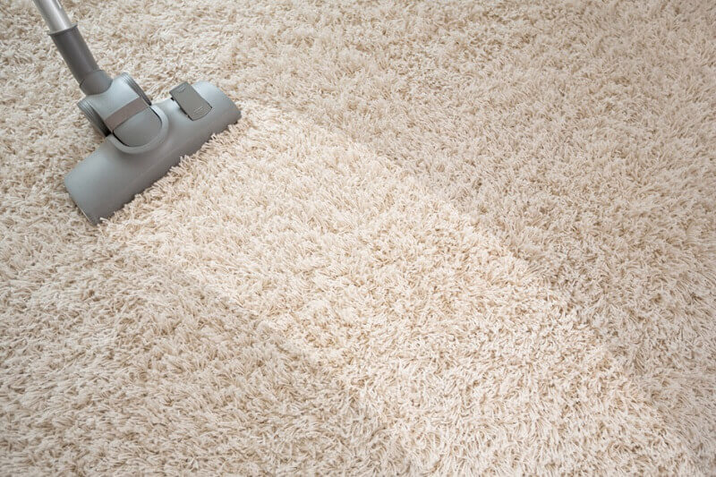 limpeza de tapete a seco Foto Wap