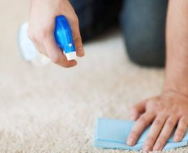 limpeza de tapete com amaciante Foto Dr. Lava Tudo