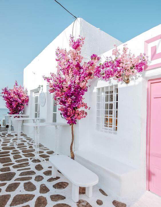 Pinturas de casas branca com flores cerejeiras