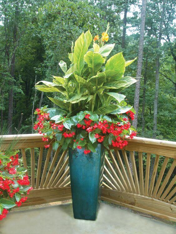 Vaso vietnamita azul com flores vermelhas