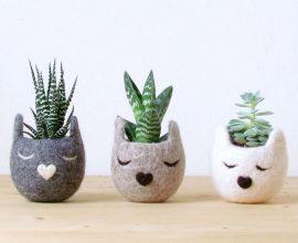 Vasos de plantas em formatos criativos