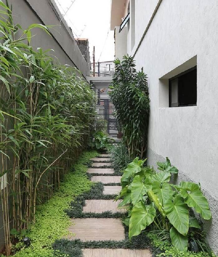 Corredor lateral da casa conta com a presença da grama preta