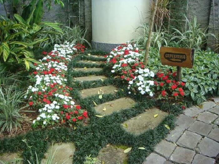 A grama preta pode ser usada para compor caminhos. Fonte Pinterest