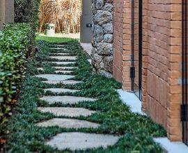 Grama preta encanta a jardinagem da lateral da casa