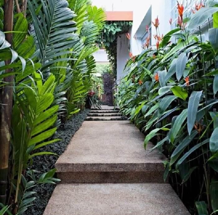 Valorize o corredor das plantas forrando com grama preta