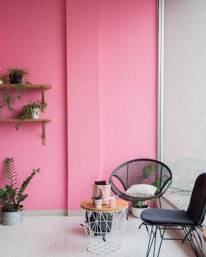 ambiente decorado com parede rosa e prateleira com vasos de plantas