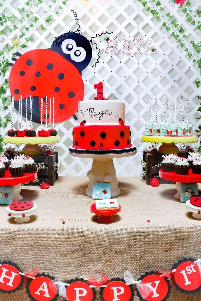 festa ladybug